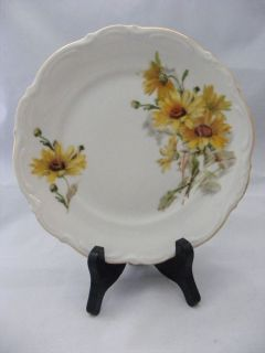 Mitterteich Susan Bavarian China Germany 2 Dinner Plate