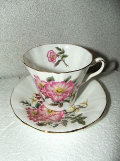 Nice Vintage Adderley English Fine Bone China teacup and saucer