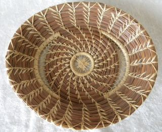 Artist Handmade Pine Needle Basket Oval Shaped Beautiful