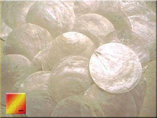 100 Capiz Shells 2 Round Two Holes Seashells Craft Free US Shipping