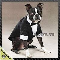 SUIT TUXEDO WEDDING Costume Dog Cat Pet 22 30lb Beagle Dachshunds