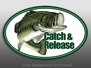 Catch & Release Sticker  bass fishing decal fish and an