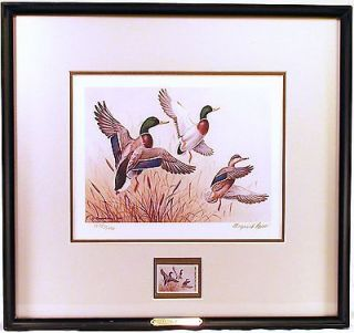 ducks unlimited prints in Prints