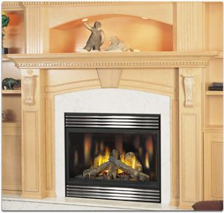 direct vent gas fireplaces in Fireplaces