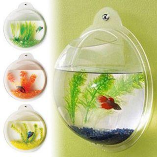 NEW WALL MOUNTED FISH TANK   BETTA BUBBLE AQUARIUM   WITH PLANT