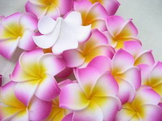 12 rosered Foam Floating Frangipani/Plumeria/Hawaiian Flower Heads