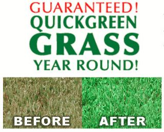 Grass Seed / Lawn Seed / Greener Grass / Green Lawn