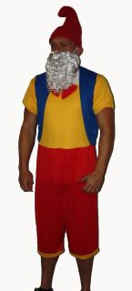 Funny Garden Gnome Christmas Fancy Dress Elf Stag Party Costume