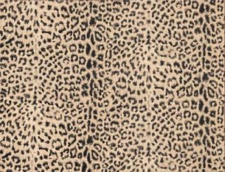BATHROOM TIGER, LEOPARD PRINT Wallpaper FF22077