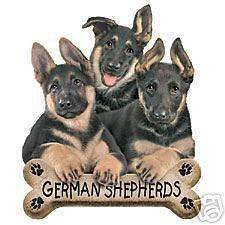 german shepherd puppies in Animals