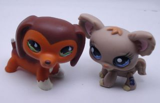 littlest pet shop special edition Chocolate brown Dachshund dog