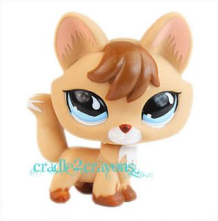 littlest pet shop fox in Littlest Pet Shop
