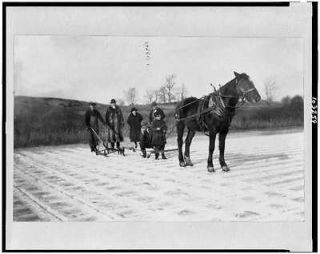 ice cutting,horse drawn,equipment,crowd,Old Lyme,Connecticut,CT,1900