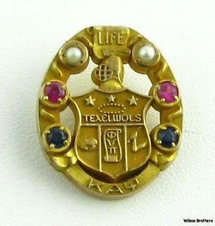 Kappa Alpha Psi Fraternity Life Member Jeweled Pin Badge Rare   10k