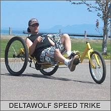 TriTon 20 3 WHEEL Tricycle RECUMBENT Trike Bike Silver
