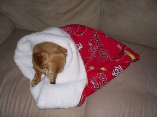SMALL DOG/DACHSHUND ST. LOUIS CARDINALS SNUGGLE SACK/BAG