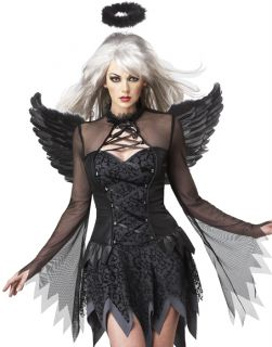 Sexy Black Gothic Fallen Angel Womens Halloween Costume,Wings,Halo Set