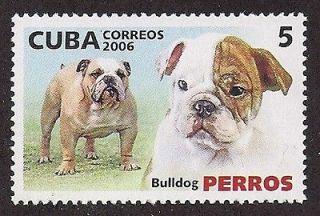 Dog Art Head & Body Portrait Study Postage Stamp ENGLISH BULLDOG Cuba