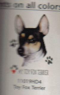 Toy Fox Terrier Love T Shirt