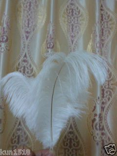 white feathers in Multi Purpose Craft Supplies