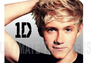 niall horan one direction iron on transfer more options transfer