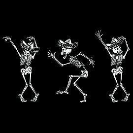 DAY OF THE DEAD Dia De Los Muertos Skeletons Dancing halloween Funny