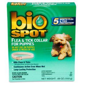 Bio Spot Flea & Tick Collar for Dogs and Puppies   Flea & Tick   Dog