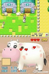 harvest moon ds how to get ore