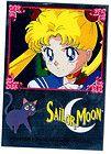 Anime Sailor Moon Trading Bling Chrome Sticker Card Usagi & Luna