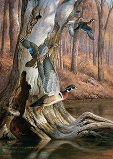 51000 Woods n Water Ducks 500 Pc Puzzle Tin Artist Hayden Lambson