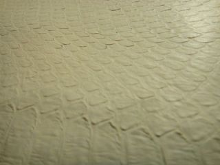 Snake Skin Leather Hide Real Size 47 x 4.5 Cream Color Great for