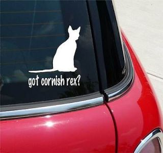 GOT CORNISH REX? CAT GRAPHIC DECAL STICKER VINYL CAR WALL