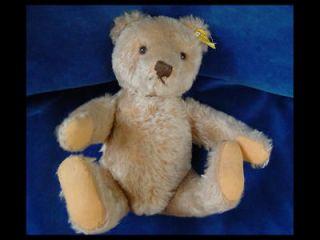 old vintage german steiff teddy bear dated c1950 steiff button