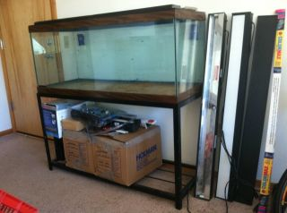 75 Gallon Fish Tank Aquarium w Large Cast Iron Stand Accessories