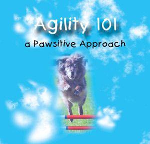 Agility 101 Dog Agility Training Great New DVD