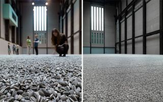 100pcs *Ai Weiwei* PORCELAIN SUNFLOWER SEEDS TATE MODERN LONDON Free