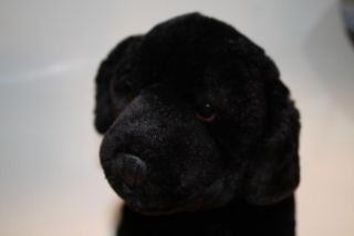 Animal Alley Plush Black Lab Puppy Dog 12 Labrador Retriever Brown