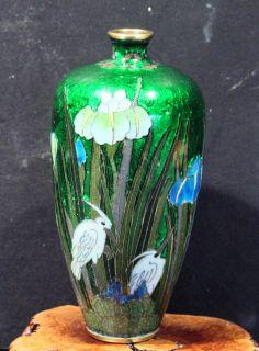 Antique Japanese Cloisonne Vase RARE Color Subject