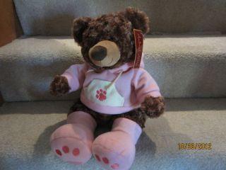 Animal Alley Plush Stuffed Teddy Bear Pink Hoodie Boots Paw Print