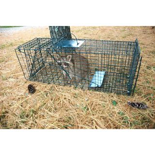 Green Live Animal Pet Trap Cage Humane Capture