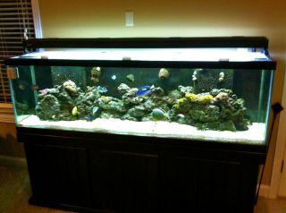 125 Gallon Fish Tank Canopy on PopScreen