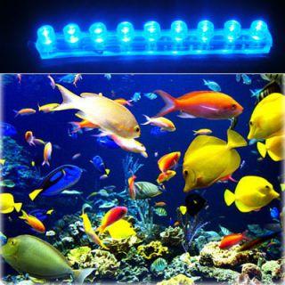 Blue Beauty Aquarium Moonlight Fish Tank 9 LED 9 LED Waterproof Lights
