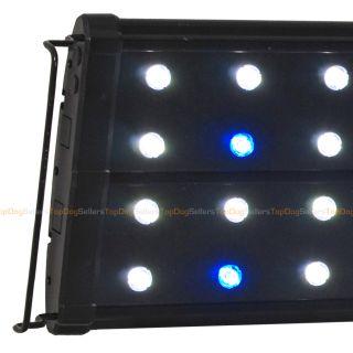 EVO Quad 36 LED Aquarium Light Coral Reef Marine Cichlid 44x 3W 3