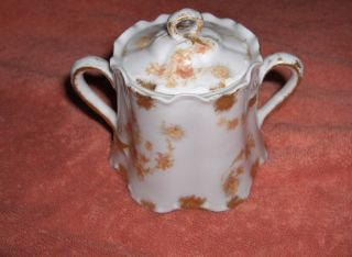 Antique Haviland China Pink and Yellow Leaf Limoges Mini Sugar