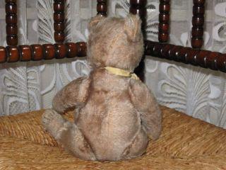 Steiff 1950s Original Teddy Mohair Bear 28cm 5328,2c Armando