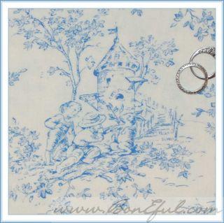 Victorian Shabby Chic VTG Blue White Baby Boy Room Toile Kid Flower
