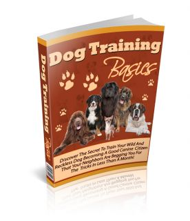 Teach Your Dog To Be A Good Canine Friend Is Easier And More