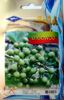 thai pea eggplant makheua puang vegetable 150 seeds  5 99