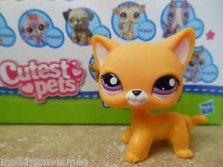 Littlest Pet Shop~ New Bright Yellow Short Hair Kitty Cat #2433 Rare