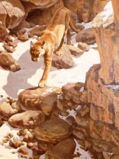 John Seerey Lester 1945 American Canyon Trail Cougar Original Oil